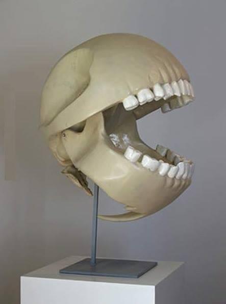 pac-man-skull.jpg
