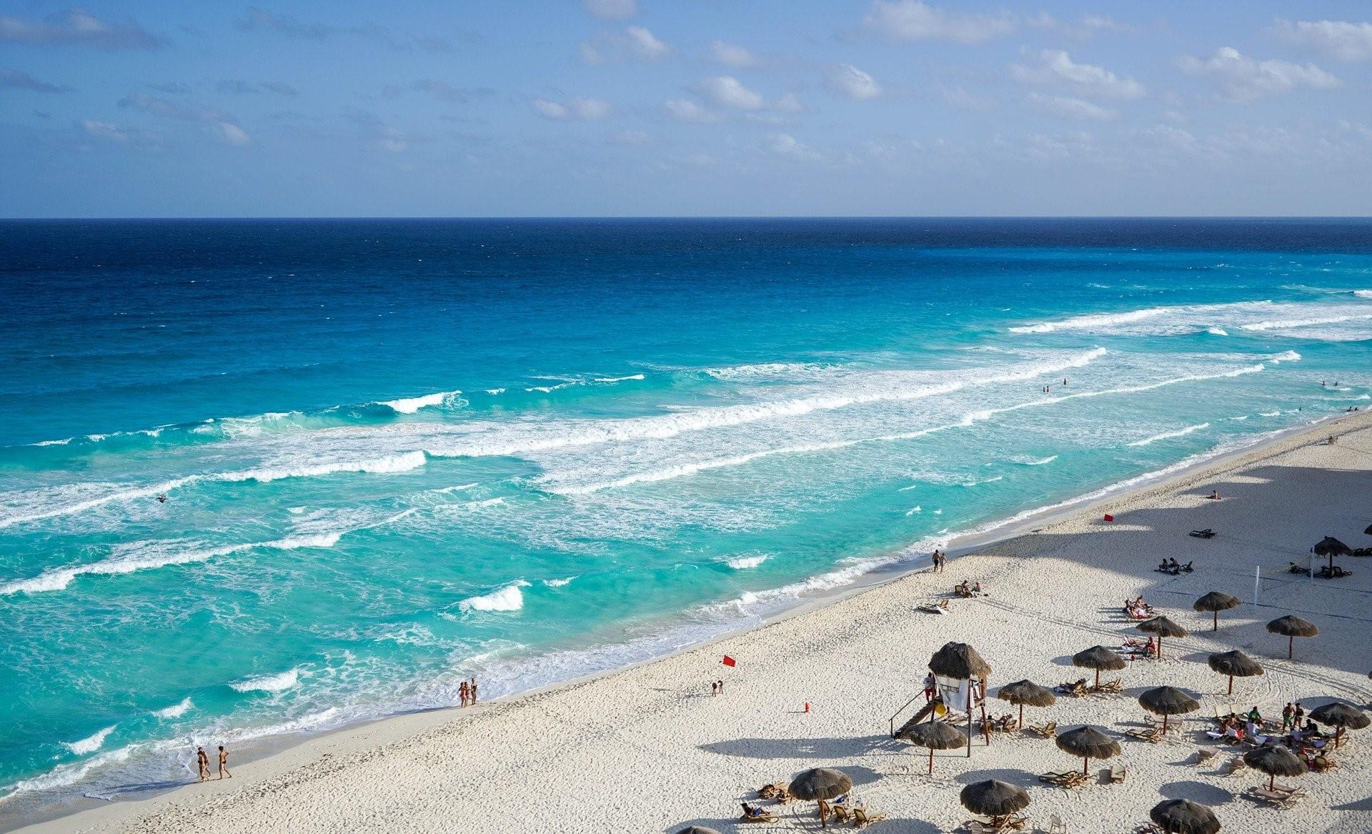 cancun beach delfines